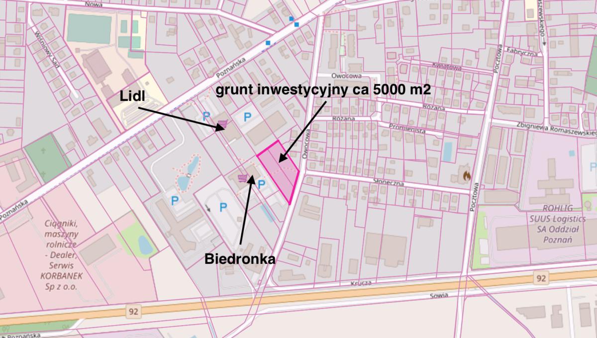 Owocowa mapa z opisem 30.01.2020
