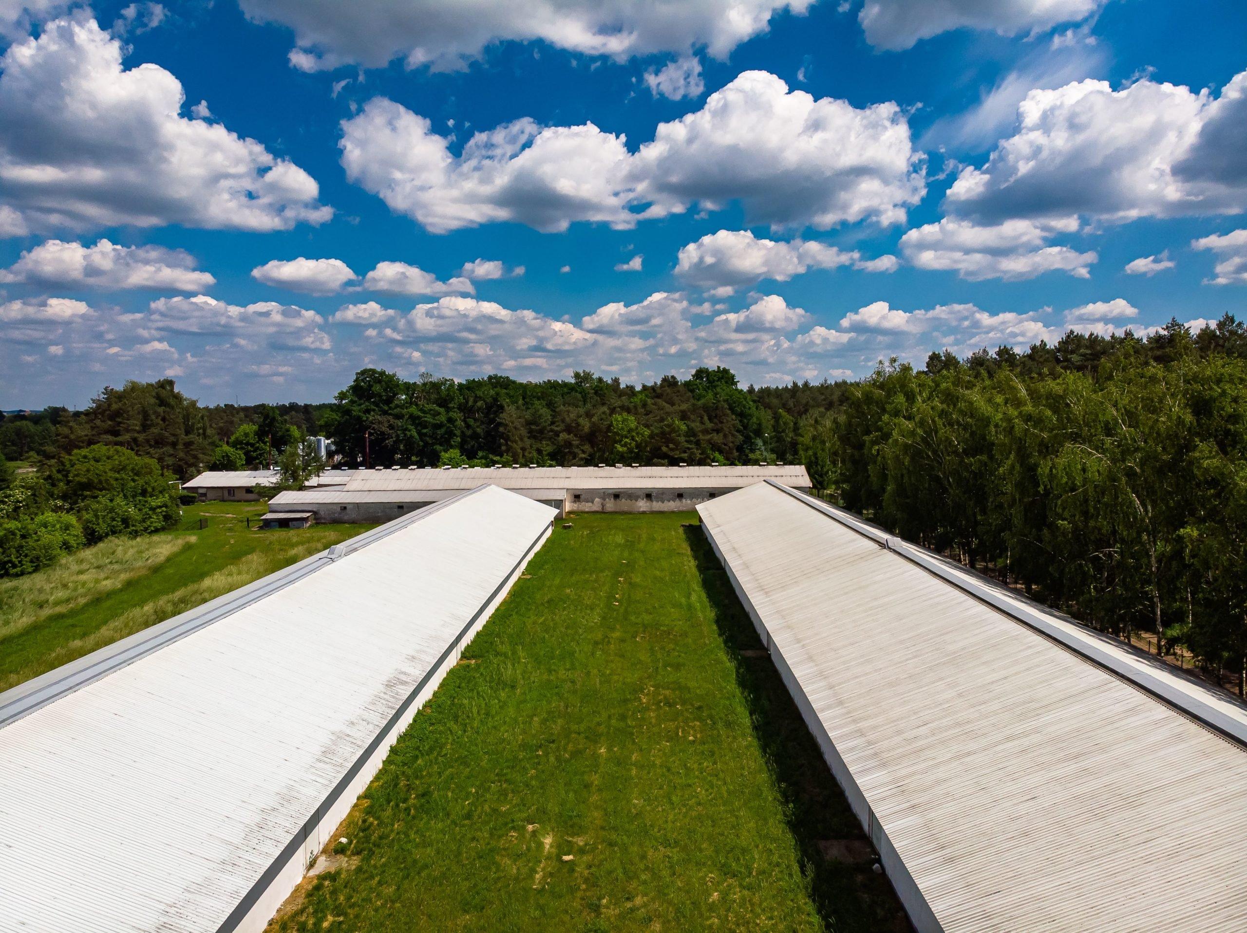 Budynki produkcyjno – magazynowe w doskonałej lokalizacji Skwierzyna 5.200,0 m2 na SPRZEDAŻ